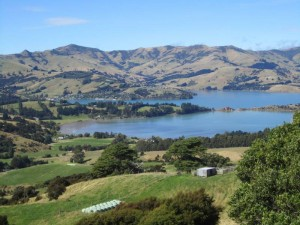 Akaroa - a jewel